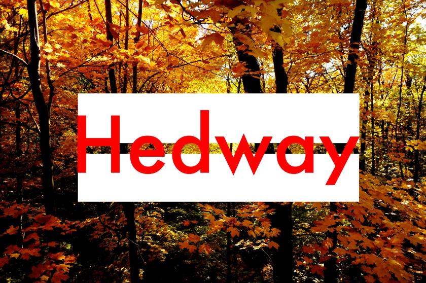 Hedway Logo Final